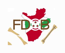 Fondation du developpement orthopedique au burundi